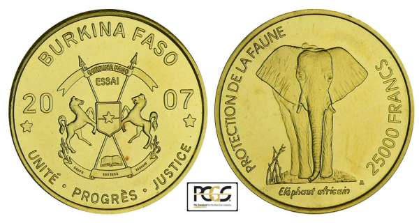 Burkina Faso - Protection de la faune - 25 000 francs 2007 - essai